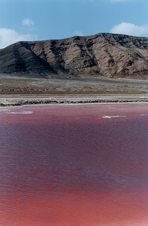 Wolfgang Tillmans, red lake, 2002. Courtesy of Wolfgang Tillmans, Galerie Buchholz Cologne / Berlin and Maureen Paley.